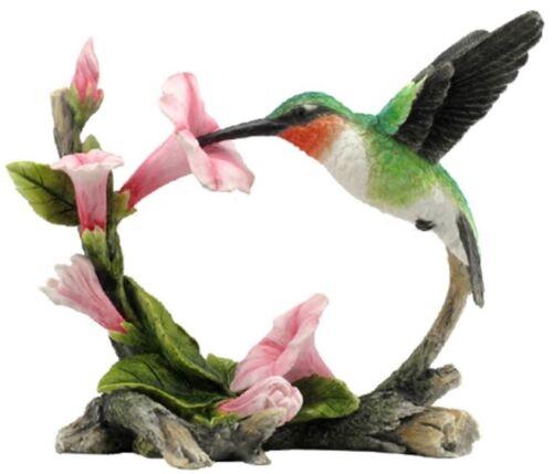 Ruby Throated Hummingbird Statue Sculpture Collectible Figurine Exotic Bird