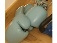 Boxing Gloves with Pads