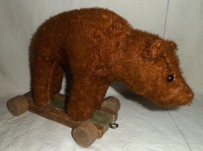Alter Bär Teddybär auf Rädern mit Buckel Vorkrieg