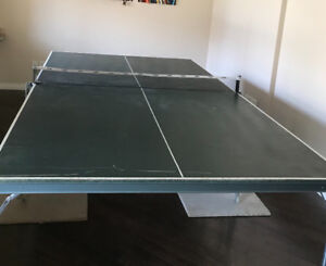 Table tennis-  - Ping Pong