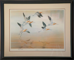 """""""The Avocets"""" framed print: Weatherly"""
