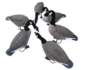 Hunting Goose Field goose 6PCS for one set 239540