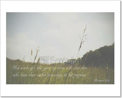 Inspirational Verse From The Bible On Art Print Home Decor Wall Art Poster - C