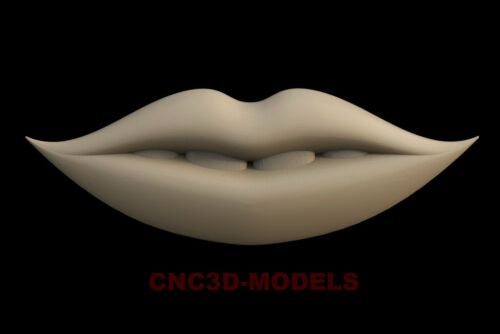 3D Model for CNC Router STL File Artcam Aspire Vcarve Wood Carving.IS240