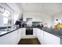 LARGE PERIOD 3 BED APARTMENT - STOKE NEWINGTON AMAZING LOCATION