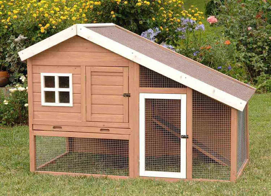 Top Must-have Chicken House Features