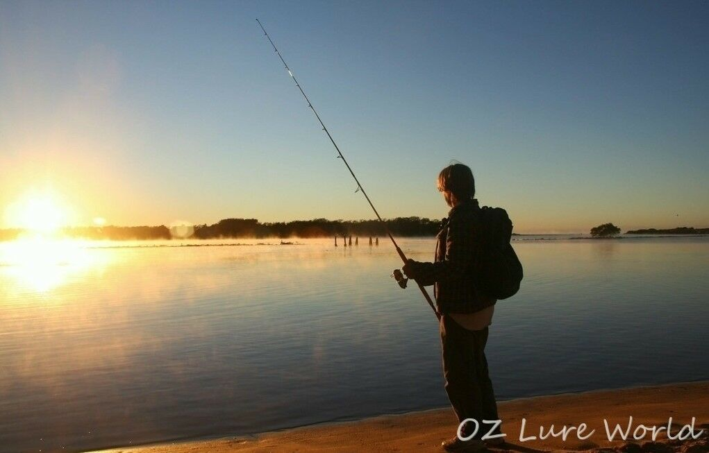 OZ Lure World