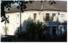 Ideal Student House in Norwich, Beautiful End Terrace Property, Edge of Golden Triangle.