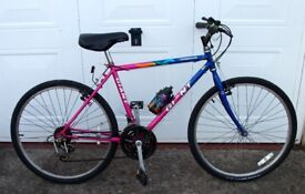 Bicycle Giant Stonebreaker