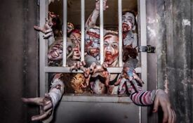 Zombie swat apocalypse experience in London paintball, combat, immersive, gift Xmas December 10th