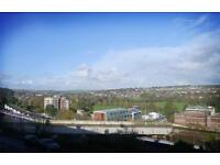 SHORT TERM upto 3 months DOUBLE room in LOVELY spacious 2-BED flat over looking PRESTON PARK