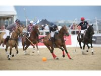 Hospitality Sandbanks Polo Tickets (4 available) - Friday 13th July