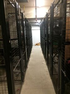 Storage Locker for rent in downtown area (The Market)