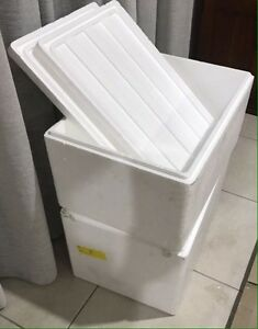 WANTED Polystyrene Boxes South Launceston Launceston Area Preview