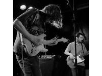Drummer & Bassist needed for established Garage Rock band!