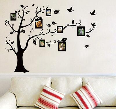US Wall Decal Sticker Large Vinyl Photo Picture Frame Removable Family Tree New