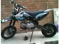 Welsh pit bike 160