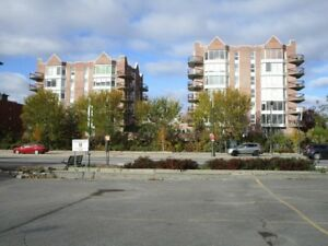 $1250 / 1200 sq. ft / 2 bdr condo for sublet avail. Jan 1st
