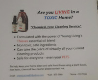 Chemical-Free Cleaning Service