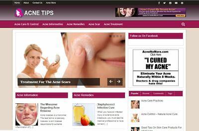 Money Making Affiliate Website Established Acne Tips Affiliate Ready Made Websit