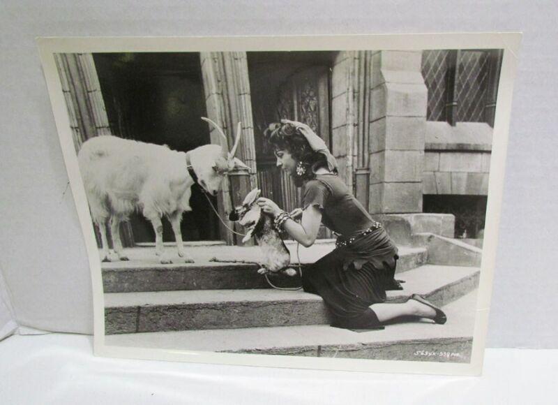 THE HUNCHBACK OF NOTRE DAME 1956 GINA LOLLOBRIGIDA ANIMALS MOVIE STILL PHOTO B&W