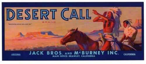 DESERT CALL Vintage Fruit Crate Label Native American Indian, AN ORIGINAL LABEL