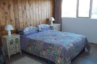 Furnished Bedroom to Rent in Adult Oriented Home