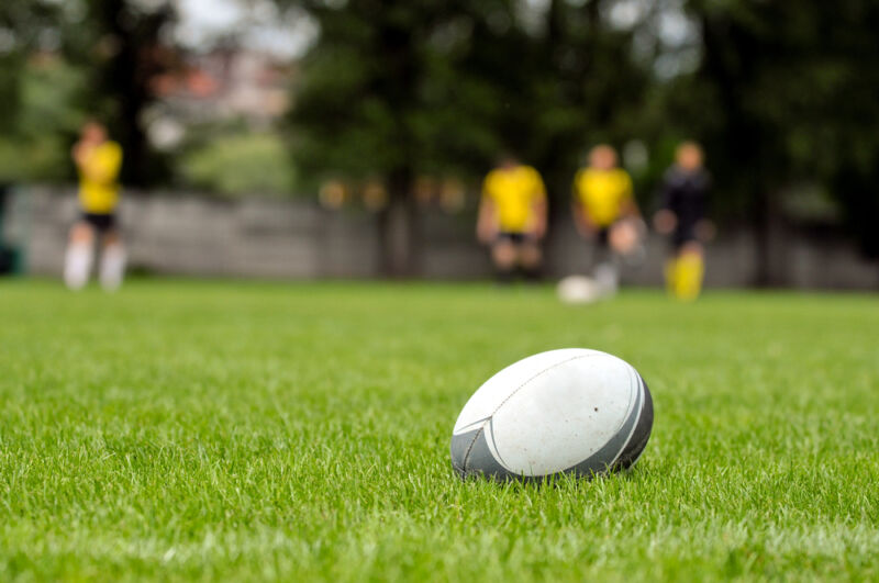 The Rugby World Cup kicks off in September