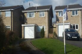 3 bedroom house in Windermere Avenue, DRONFIELD, S18