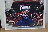 hockey canadien carey price behind the net auto