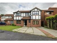 6 Bedroom Detached property situated on Beaver Close, Rosemount, Pity Me, Durham