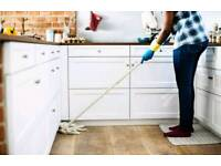 Tracey' s House Cleaning Services