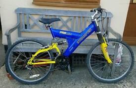 Adults suspension bike