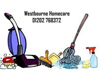 HOUSEKEEPER/COMPANION/HOME HELP/ELDERLY. PART TIME. OWN CAR/TRANSPORT ESSENTIAL