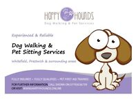 Experienced & Reliable Dog Walking & Pet Sitting Services in Prestwich, Manchester