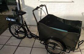 Electric Cargo Trike Bike Bicycle