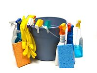 Domestic cleaner lady £9 pph