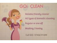 Reliable friendly cleaner