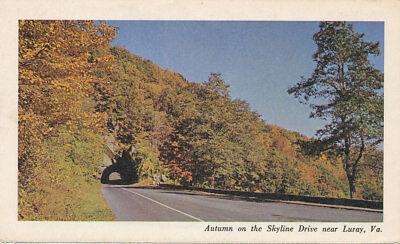 Luray VA * Autumn on the Skyline Drive  ca. 1960