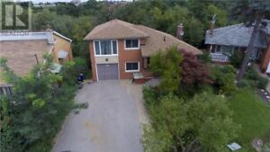 35 TROUTBROOKE Drive Downsview, Ontario