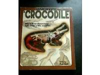 Education Book Crocodile Book -Exeter