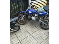 Pit bikes 110cc and 125cc