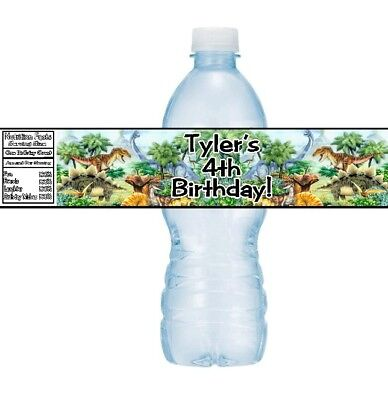 12 Dinosaurs Birthday Party Baby Shower Water Bottle Stickers Labels T-Rex - Dinosaurs Birthday
