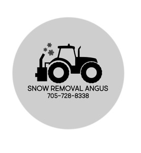 Snow Removal in Angus