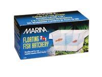 MARINA Floating Fish Hatchery!