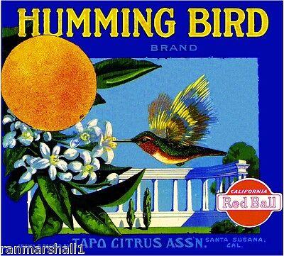 Santa Susana Humming Bird #2 Orange Citrus Fruit Crate Label Vintage Art Print