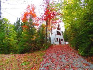 Maison - à vendre - Adstock - 12958547