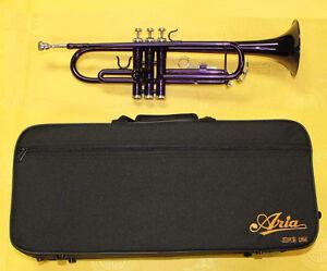 JXTR007 Trumpet Finish Purple