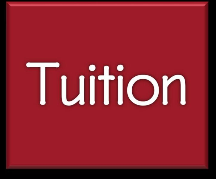 EFFECTIVE TUITION 1 to 1 / Ad-hoc Consultation / Small Groups (FULL-TIME) [Not Agency]