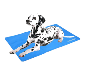 Pets cool mat